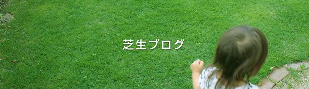 芝生ブログ