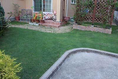 手入れ後の芝生