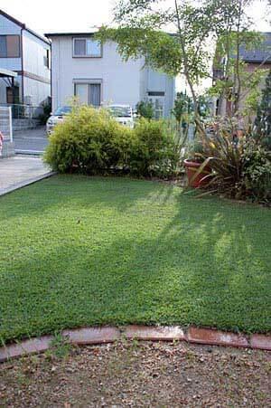 芝刈り後の前庭