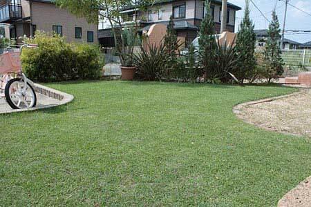 我が家の芝生の庭