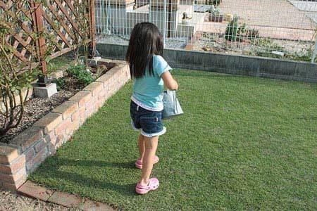 芝生の液体肥料散布