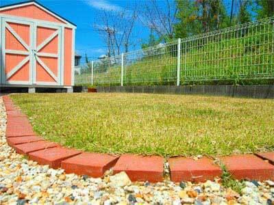 裏庭の芝生