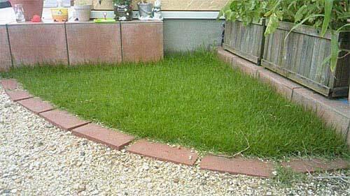 ちょこっと芝