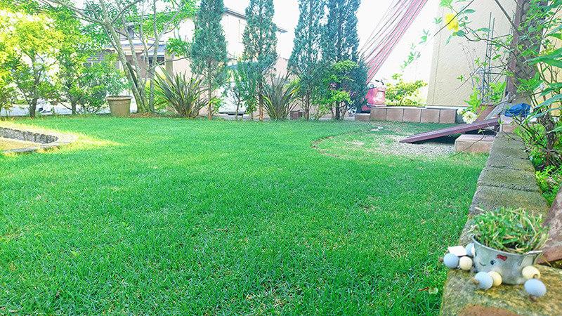 芝生を植える時期
