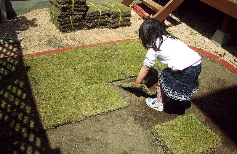 芝植え作業